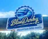 Mountain Biking in Derby, Tasmania